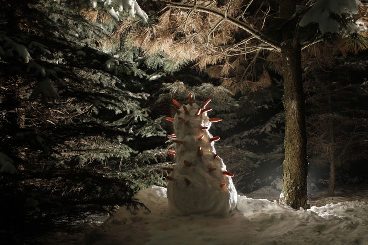 balwan 2011 śnieg, marchewki, fotografia Bartek Buczek & Jan Oczko