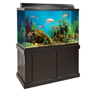 Top Fin® 150 Gallon Black Aquarium with Canopy, Light and Stand - PetSmart