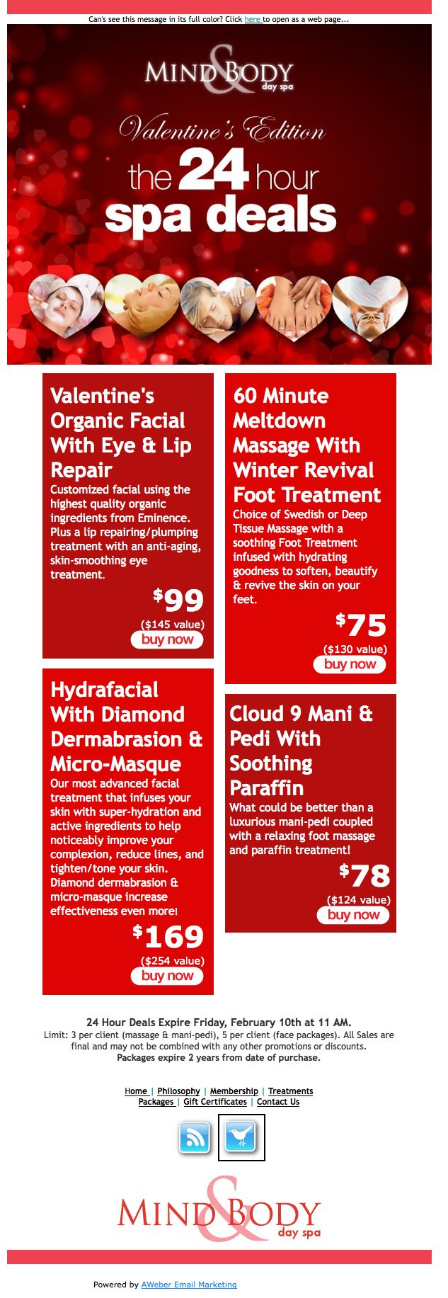Mind  Body Day Spa promoted their 24-hour sale on spa treatments with this lovely email. www.mindandbodydayspa.com