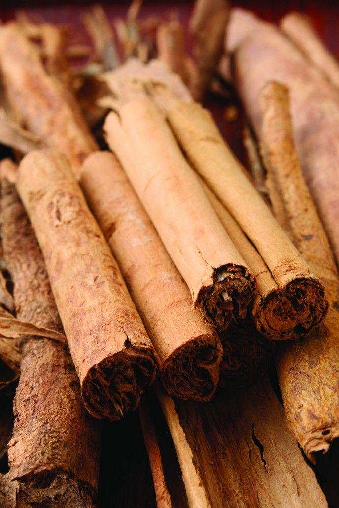 L'huile essentielle d'écorce de cannelle Cinnamomum cassia) est une huile très puissante qui tue 99.9 % des microbes, même ceux résistants aux antibiotiques. Ses propriétés antiseptiques, anti-infectieuses et antivirales la rendent utile pour traiter les maux de l'hiver tels que les rhumes, les grippes et les bronchites. ***Cliquez sur la photo pour lire la suite. #huileessentielle #aromatherapie #sante #bienetre #rhumes #grippes #brochite #soins #fatigue #cannelle