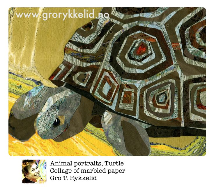 Turtle, collage, marbled paper