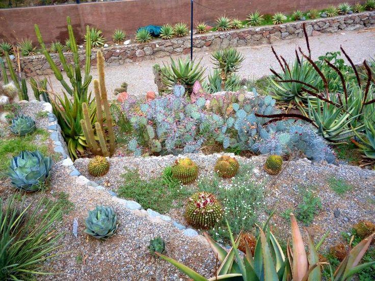 El jardin botanico chirau mita la rioja chilecito argentina - Jardines de azahar rioja ...