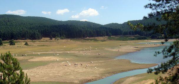 Parco Fluviale di Camigliatello Silano