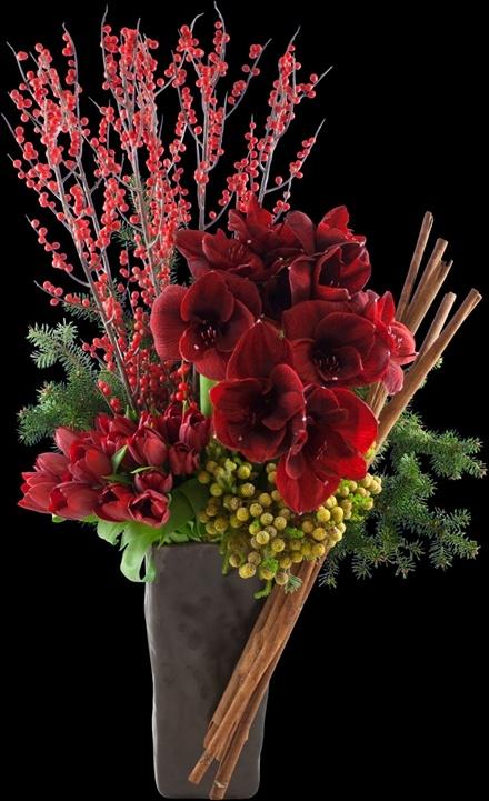Crimson Elegance | Winston Flowers