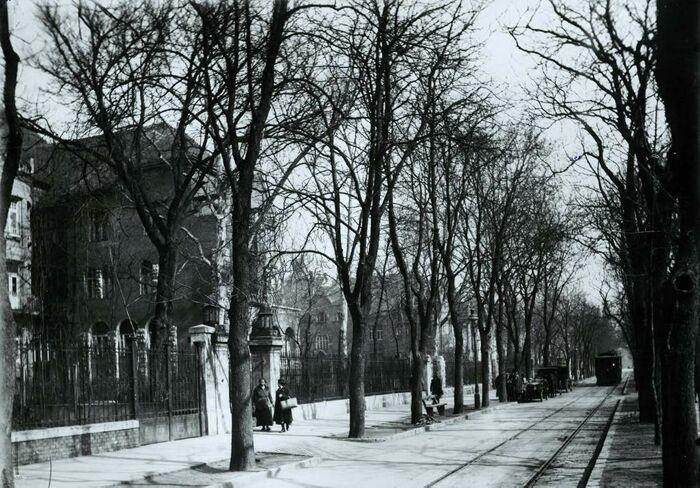 A Városligeti fasor, 1910-es évek Budapest BTM Kiscelli Múzeum Fényképtár