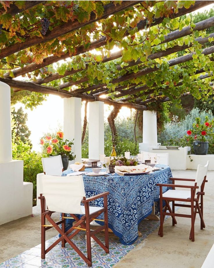 Al fresco dining under grape vines