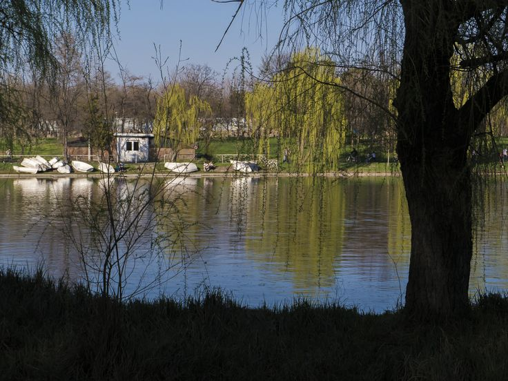 park, lake, trees, color, sky, reflections, water, willow, boats, marina, silhouette