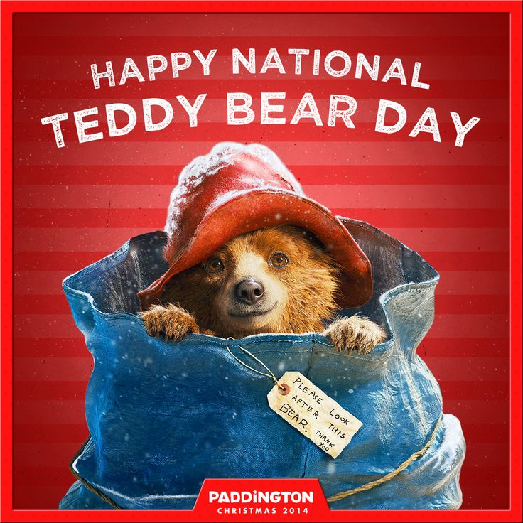 Happy National Teddy Bear Day! Send us your pictures with Paddington to celebrate. | Paddington