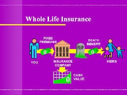 Early In Life, Few People Worry Too Much About What Will Happen After They  Are. Permanent Life InsuranceWhole Life InsuranceLife Insurance QuotesAffordable  ...