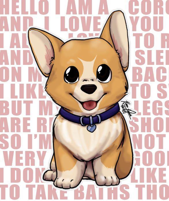 Hello! I am a Corgi and I love you!