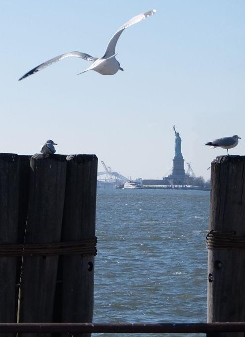 自由の女神さまに新年のご挨拶へ - 冬晴れのBattery Park : ニューヨークの遊び方