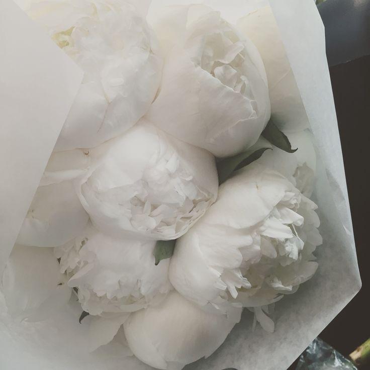 Peonias blancas. Tan femeninas!!