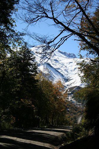 Camino al Pirigallo, Termas de Chillán, Chile