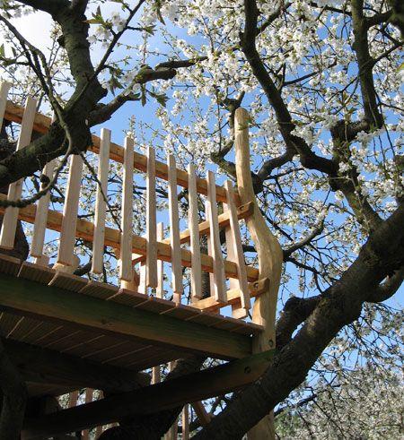 Baumhaus Kirschenerlebnispfad - Aussichtsplattform in einem Kirschbaum, Warteberg, Witzenhausen