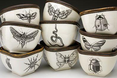 Cabinet of curiosities / wunderkammer / antique vintage illustration cups home decor inspiration