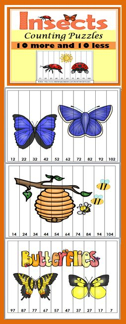 INSECTS Counting Puzzles - 10 MORE and 10 LESS Number Sequences
