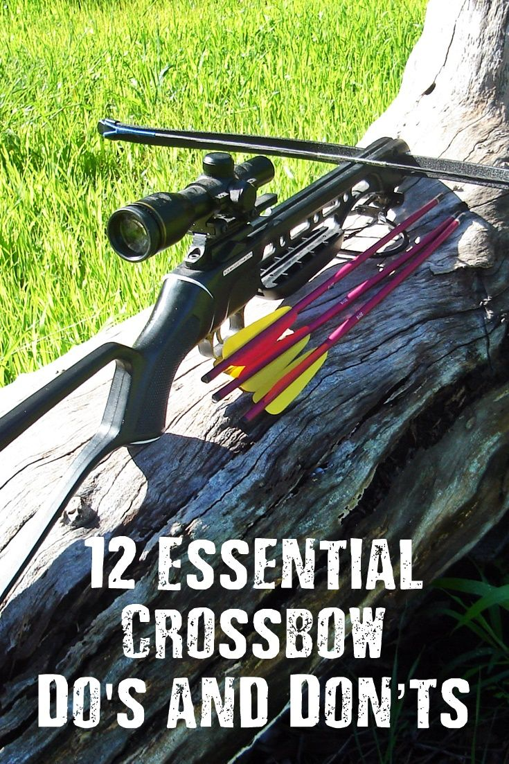 12 Essential Crossbow Do's and Don'ts