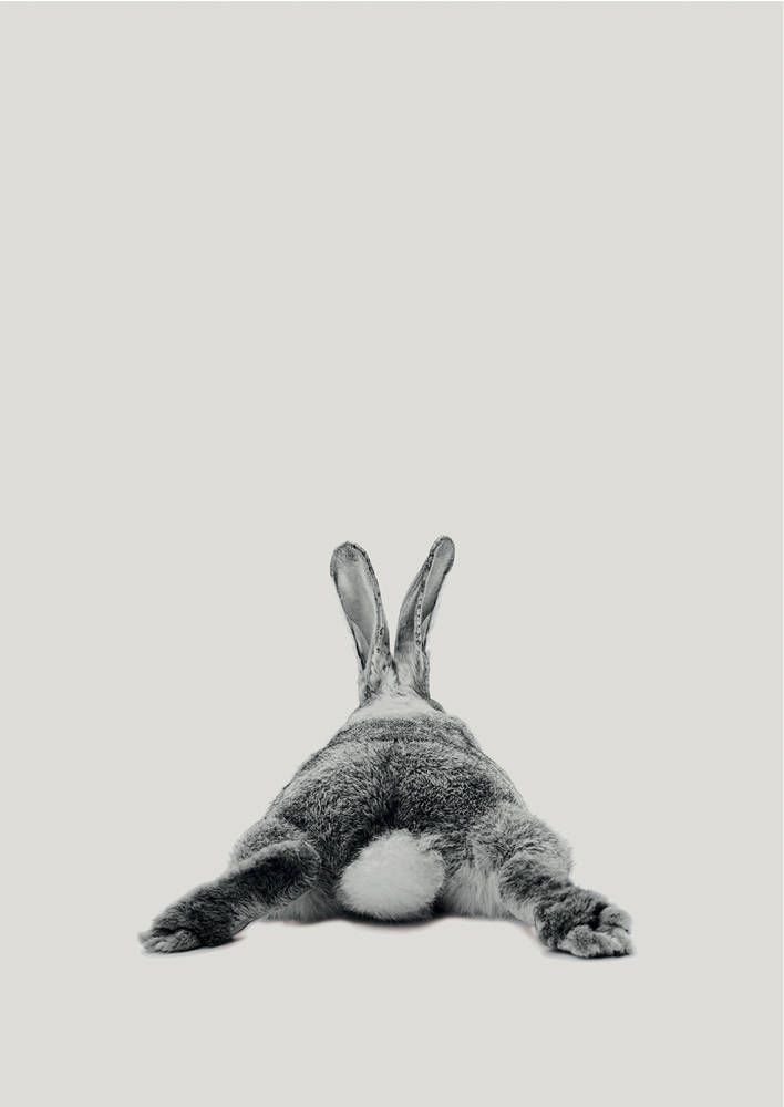 Rabbit Print, Woodlands Nursery Art, Rabbit Wall Decor, Black and White Baby Animal Print, Printable Black and White Bunny, Digital Download – Austin C