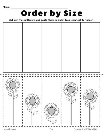 FREE Printable Sunflower Ordering Worksheet - Shortest to Tallest! Practice ordering skills with your preschoolers and kindergartners using this worksheet. Includes a tallest to shortest version too! Get both free here --> https://www.mpmschoolsupplies.com/ideas/7768/free-printable-sunflower-ordering-worksheets-shortest-to-tallest-tallest-to-shortest/