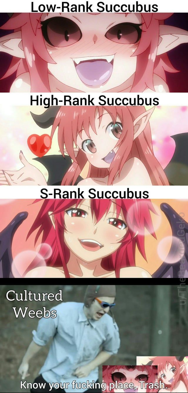 Accept no Succstitutions. Animemes in 2020 Anime