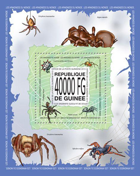 GU 13517 bSipders, (Gasteracantha cancriformis, Cheiracanthium punctorium, Phidippus audax, Atypus piceus).