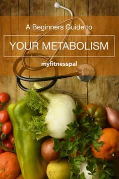 Beginners-Guide-to-Your-Metabolism