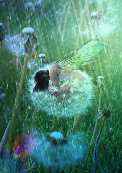 Dandelion Fairy By ToneDeaf2.