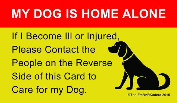 Every pet owner should carry one of these! Business Card