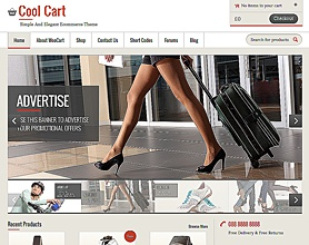 E-commerce Themes for WordPress