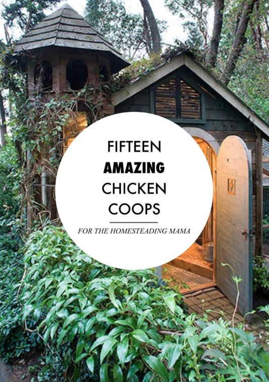 Fifteen Amazing Chicken Coops (and plans!) .