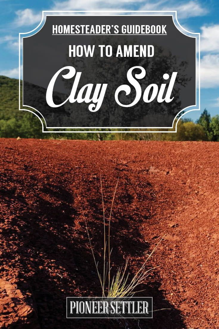 How To Amend Clay Soil