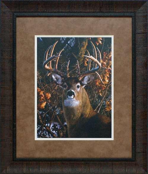 North American Art An Autumn Gentleman by Carl Brenders Wholesale Framed Deer Buck Wildlife Art Print