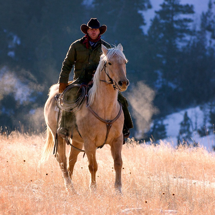 Cowboy rides a palomino up out of a Wyoming canyon.