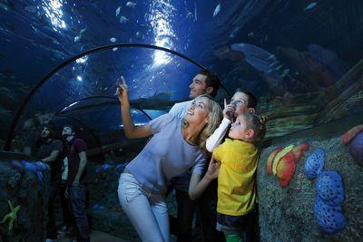 Sea Life #Aquarium  (2.5 Km dall'Hotel Domingo)
