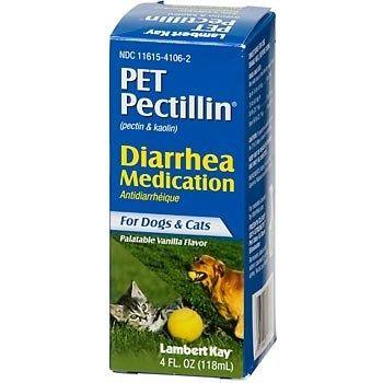 Dog Diarrhea Three Days