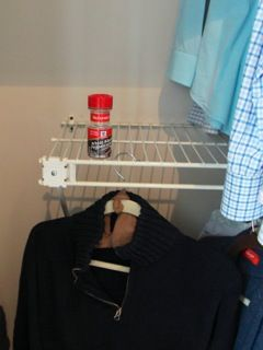 how to kill moths in the closet
