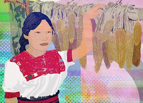 Chiapas Dreams on Behance