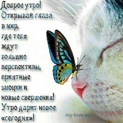 #доброеутро #удачногодня #всемпозитива #счастье #жизньпрекрасна #оригинальныеподарки #БонМарше #Челябинск