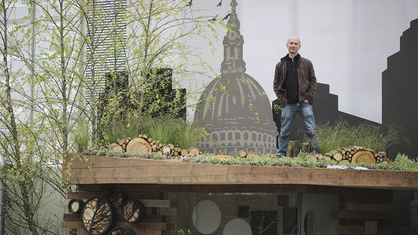 Nigel Dunnett on top of RBC's Blue Water Roof Garden.  Roof garden within a roof garden!  Nigel Dunnet is standing on the roof of a bird hide within his Chelsea Flower Show roof garden.  So ... how to create the cityscape backdrop...