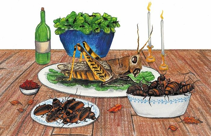 By 2050, grasshoppers, caterpillars, and ants will be part of Thanksgiving dinner.
