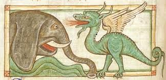 Image result for medieval bestiary