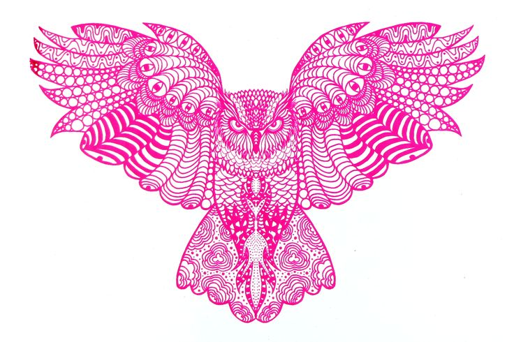 Beautifully detailed owl in hot pink. Printed using the Screen Sensation + Wisdom screen