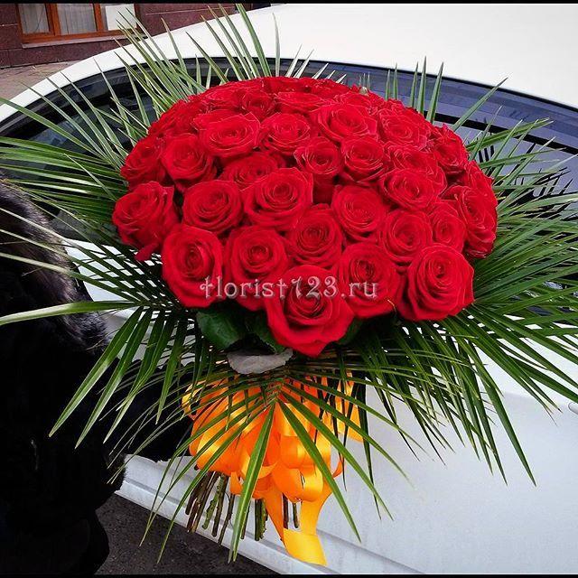 Букет из 51-й красной розы #цветы #розы #букет #красныерозы #51роза #букетназаказ #цветыназаказ #доставкацветов #доставкацветовкраснодар #цветочнаякомпозиция #краснодар #florist123 #zvetochniyvals #цветочныйвальс #цветочныйвальскраснодар #zvetochniyvalskrasnodar #krasnodar #заказатьцветы #заказроз #цветысдоставкой #купитьцветы #купитьцветывкраснодаре #купитьрозывкраснодаре #купитьрозы #букетцветов #краснодар