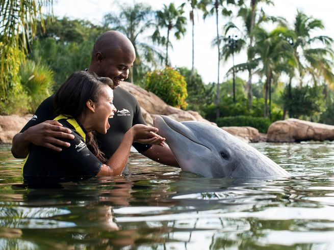 It's not just dolphins at Discovery Cove! From some of the best snorkeling in Florida to hidden beach grottos, Discovery Cove is one of Central Florida's best experiences — and undoubtedly one of the most relaxing. Here's how to make the most of your visit to this all-inclusive oasis. Weekend Getaway Guide   11 Insider Tips for Disney World