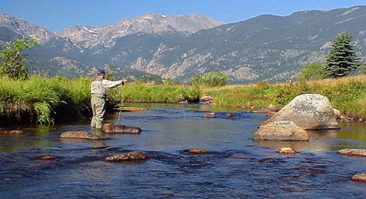 Fishing in Rocky Mountain National Park | Colorado Fishing. https://shopitwow.com/products/12-pc-dry-flys-for-fishing-trout-salmon-and-bass