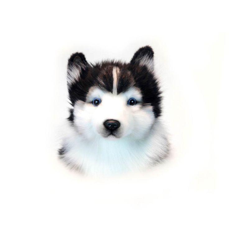 Perro Husky de peluche - más en peluchetes.com