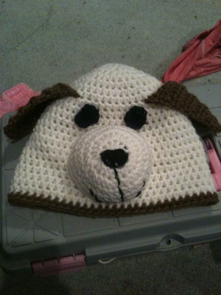 Dog hat.
