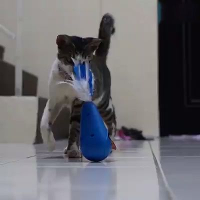 Feathers Cat Toys Play Entertainment Electric Tumbler Cat Toy