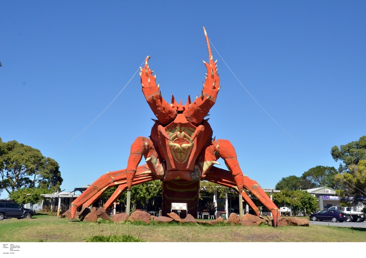 Larry our giant lobster. A sight to see!  Image Source: SA Tourism Commission.