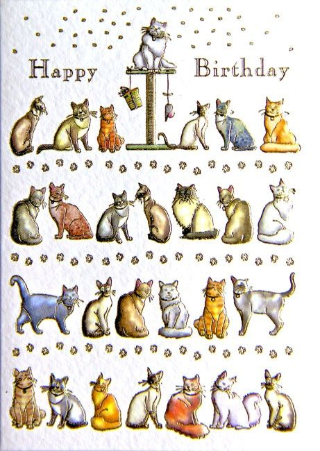88 best images about Cat Birthday Cards – Cat Birthday Card